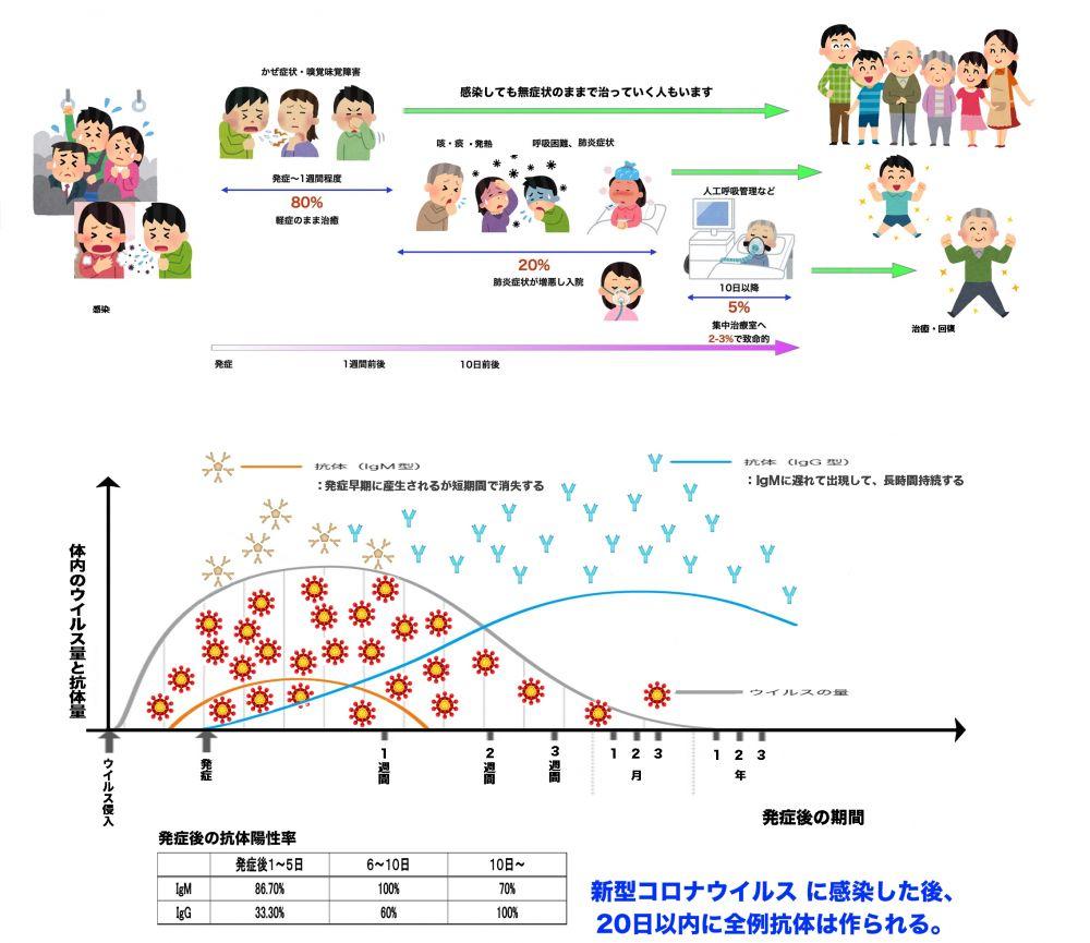 横浜 区 鶴見 コロナ 感染 者 市